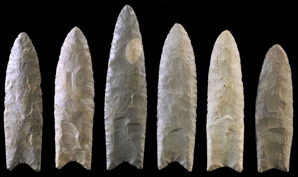 theories of the origins of the clovis people Origins of the clovis people clovis points found on the east coast of the us challenge the traditional theory that the clovis people migrated to north-america via the bering land bridge.